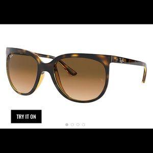 Cats 1000 Rayban Sunglasses